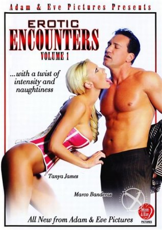 Скачать с TurboBit Erotic Encounters [2012] DVDRip