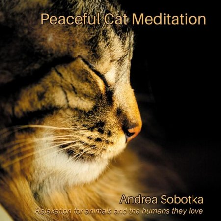 Скачать с turbobit Andrea Sobotka - Peaceful Cat Meditation (2014)