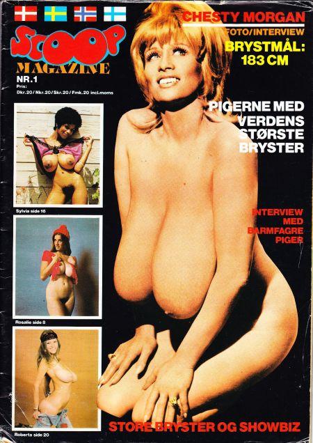 Качественные журналы порно