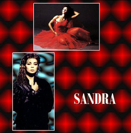 Скачать с turbobit Sandra - The Very Best Of Sandra (2CD) [2016] MP3