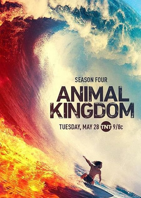 Скачать с turbobit По волчьим законам / Animal Kingdom - 4 сезон (2019)